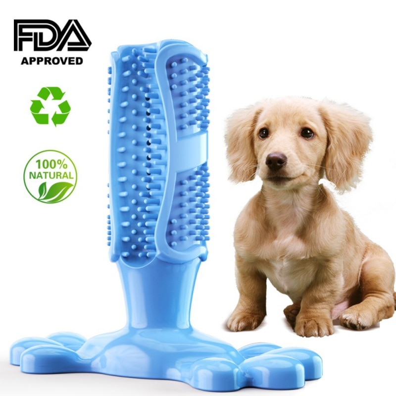 Pet Dog Toothbrush Chew Toy and Toothpaste
