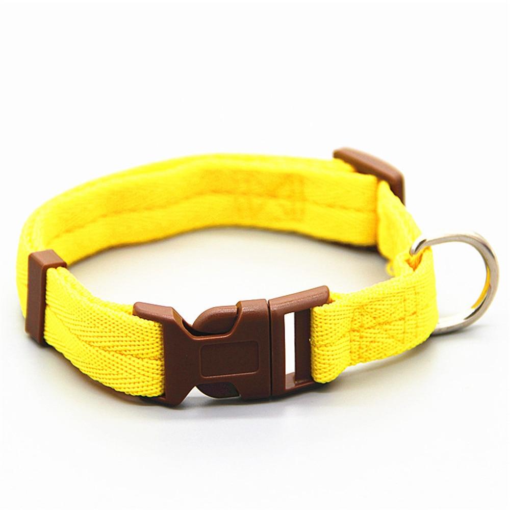 Dog and Cat Nylon Collar