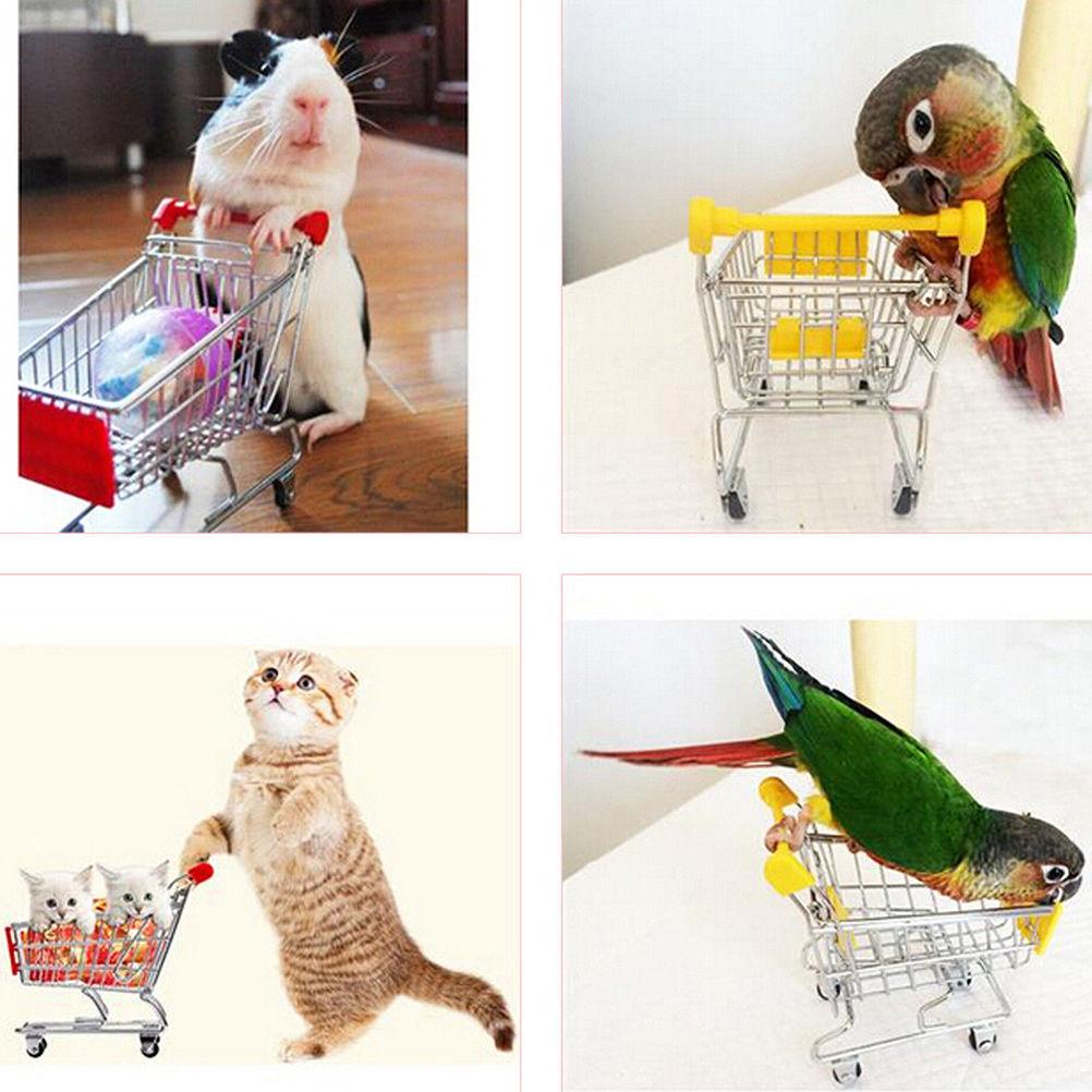 Colourful  Mini Supermarket Shopping Cart